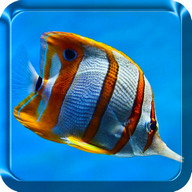 Sea Animals Live Wallpaper