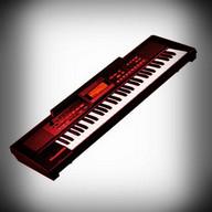 Virtual Organ