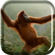 Wild Dance Crazy Monkey LWP