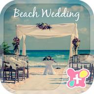Cute Theme-Beach Wedding-
