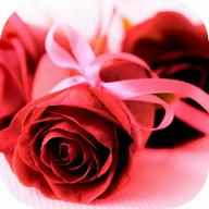 Imagens com Mensagens de Amor