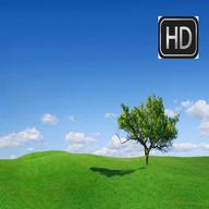HD Wallpapers for Lenovo