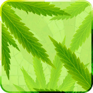 MaryJane Free Live Wallpaper