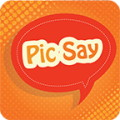 Pic Say