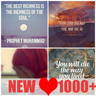 Daily Holy Quran Quotes