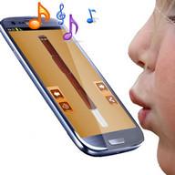 Music Flute
