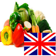 Vegetables in English Language