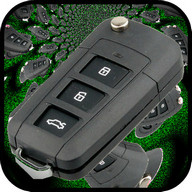 Virtual Car Key Remote