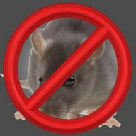 Anti Ratas