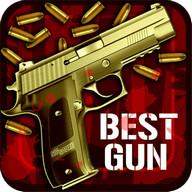 Best Gun