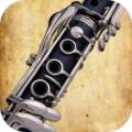 Clarinet Play