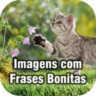 Imagens com Frases Bonitas