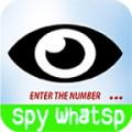 Spy whatssp