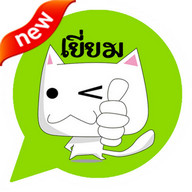 Festival Cat Emoticon-Thailand
