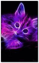 Neon Kitten