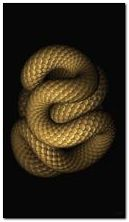 serpiente espiral
