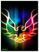 Красочный Феникс
