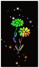 फूल-सार