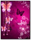 butterfly 240x320