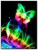 Colorful neon butterfly