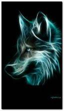 lobo 12