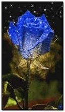 नीला गुलाब