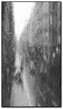 Ngày mưa