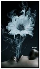 flower smoke