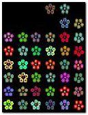 Kwiaty animowane