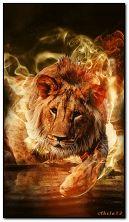 Лев на вогні