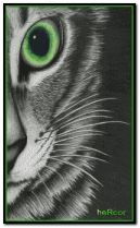 gato hc 240x400