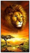 सिंह राजा