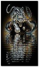 tygrys wodny
