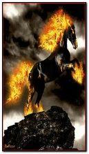 caballo fuego c6