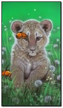 cute lion cub and butterflies