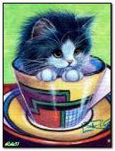 Gattino in una tazza