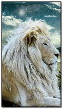 शेर राजा