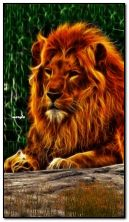 leone d'oro