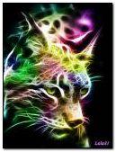 Neon wildcat