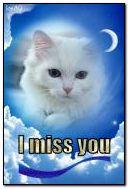 मुझे आप की याद आती है