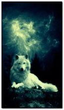หมาป่า