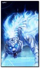 Tygrys fantasy