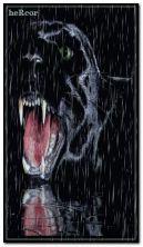 panther 360x640 b
