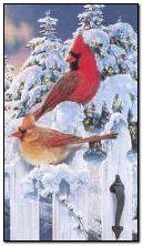 Зимові птахи
