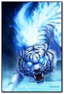 Tigre en bleu