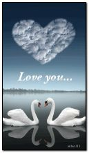 Łabędzie w miłości