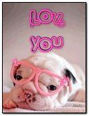 Cute puppy. I love you