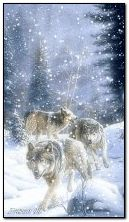 A?MATED marchando sob a neve Família Wolf