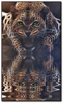 léopard-toujours-prêt-à-attaquer