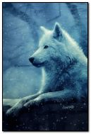 Сніговий вовк